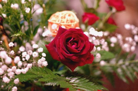 季節の花のペーパークラフトの作り方、老人ホーム介護の現場でも。