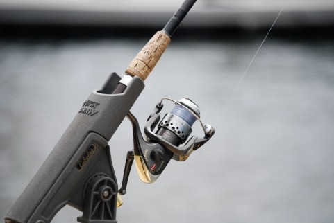 鯛・アジ・サヨリ・太刀魚・タコ…2013年!最新の釣り情報をGoogleで調べる方法