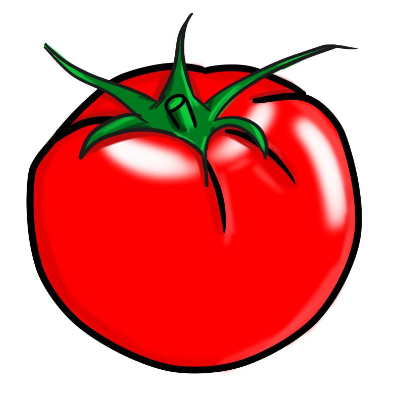 サラダ作るなら覚えとけ!プロが実践するトマトの切り方
