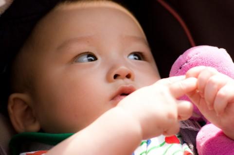赤ちゃんせんべいの作り方