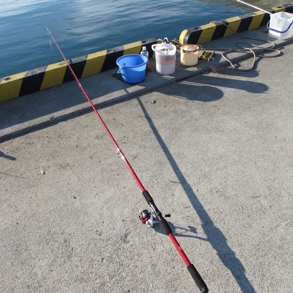 「もう、帰りたい」なんて言わせない!小さな子どもに魚を釣らせてあげる方法