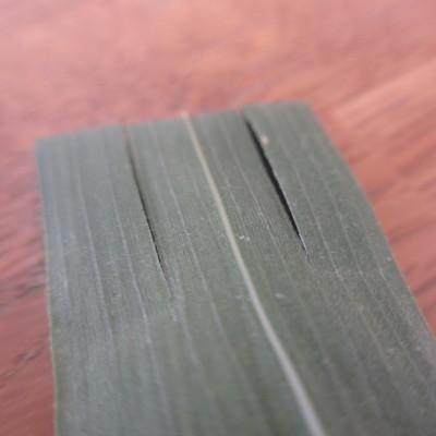 笹の葉を三等分に切る