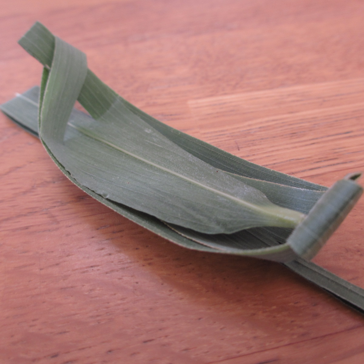 キャンプや川遊びに!昔懐かし笹舟の作り方