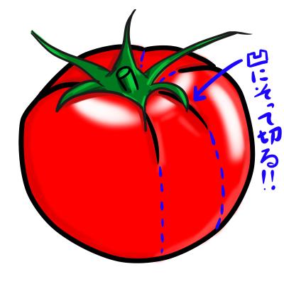 トマト 凹みに沿って切る